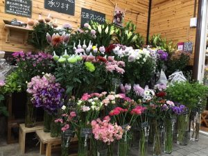 迎春のお花