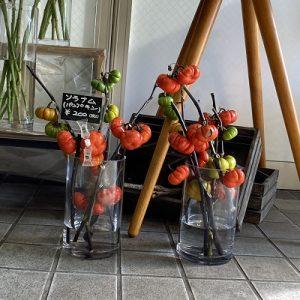 10月の生花